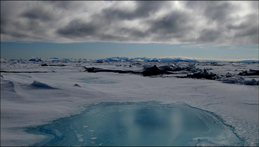 Kampen mellom farger i skyene og landskapet gir gode kontraster. Foto: Hans Kristian Krogh-Hanssen