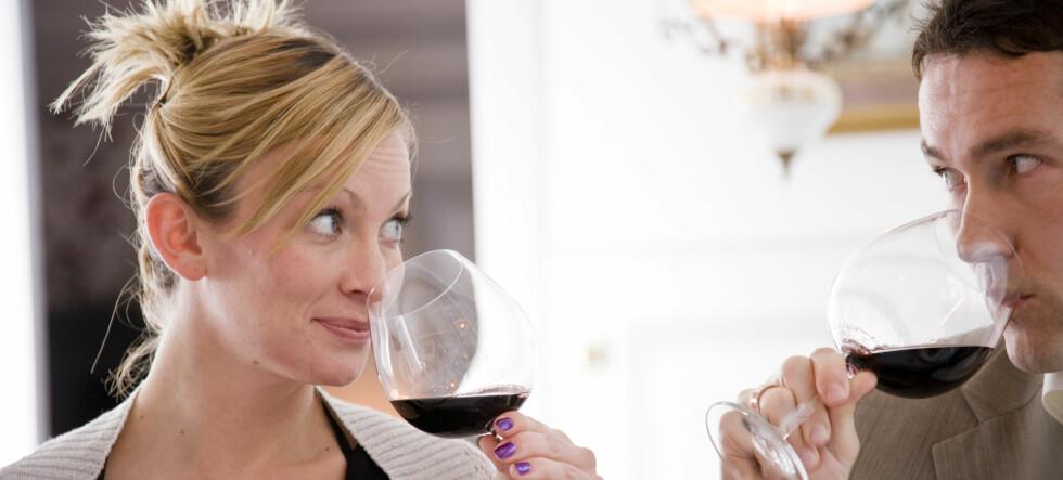 Du er mindre utsatt for å bli alkoholavhengig når du velger vin fremfor øl. Illustrasjonsfoto: colourbox.com  Foto: Foto: colourbox.com