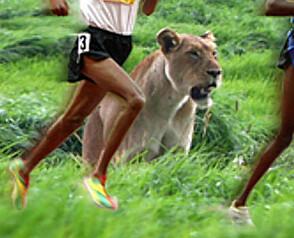 Maraton som tar pusten fra deg
