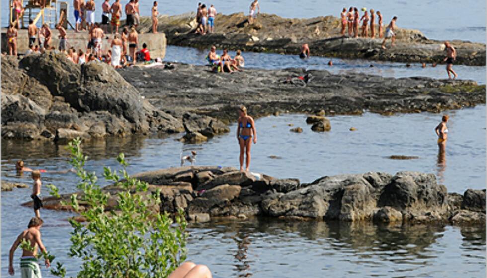 Norsk sommer på sitt beste.