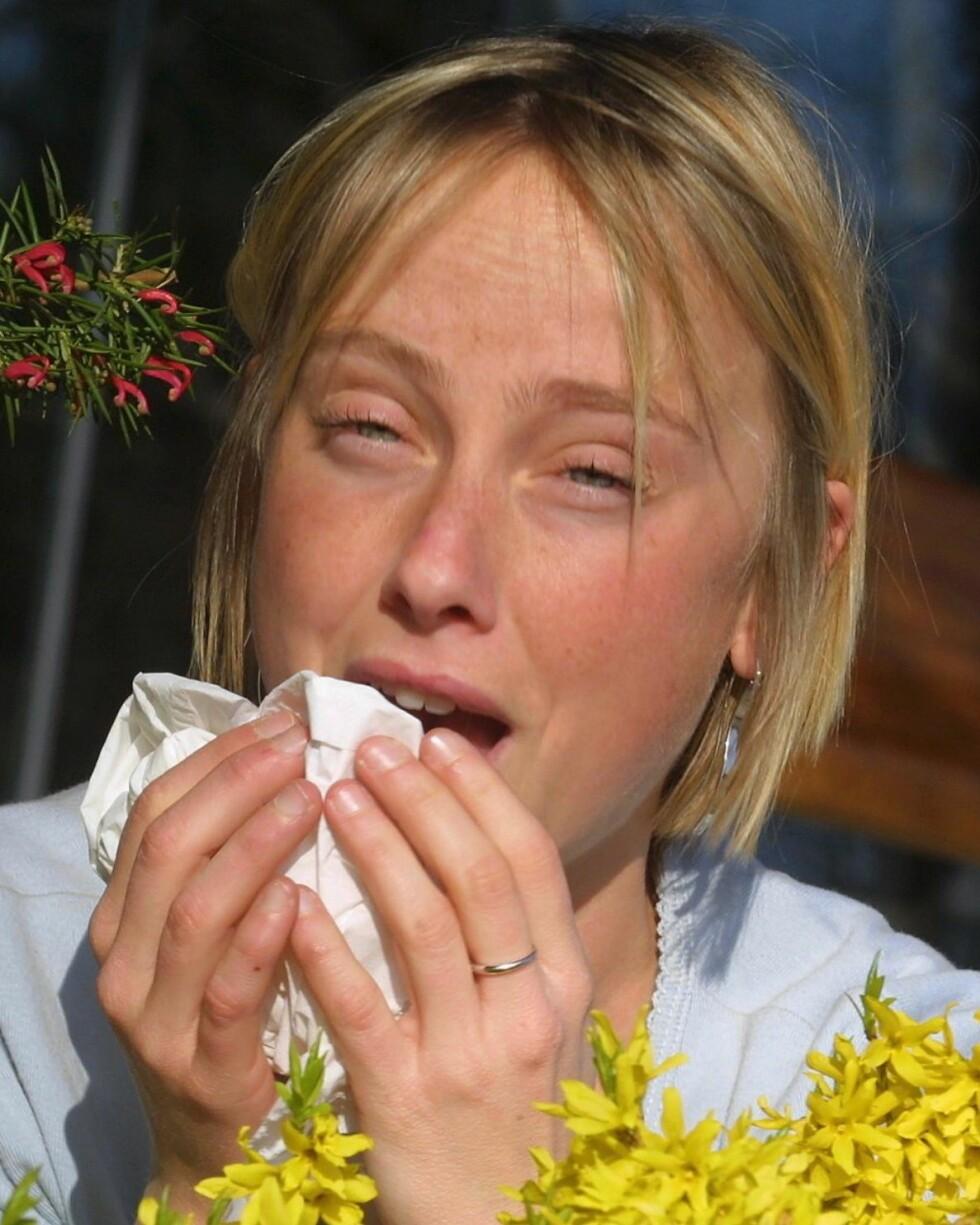 Allergi kan være svært plagsomt, men det finnes heldigvis hjelp å få. Illustrasjonsfoto: colourbox.com  Foto: Foto: colourbox.com