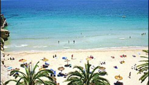 Mallorca er godt likt av nordmenn. Foto: Star Tour
