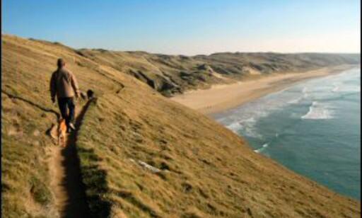 Fra Newquay er det bare å legge ut på vandring. Foto: www.photito.com