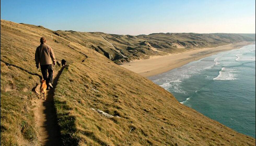 Newquay er Cornwalls festmagnet, men like utenfor byen er det sjelefreden som venter. Foto: www.photito.com