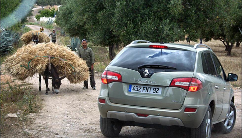 Trafikkbildet i Marokko er til tider eksotisk...