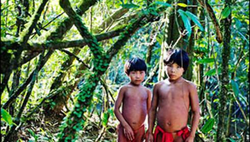 Disse og flere andre av Bo Mathisens bilder fra Amazonas kan du se på Rådhusplassen i Oslo i juni og juli. Foto: Bo Mathisen