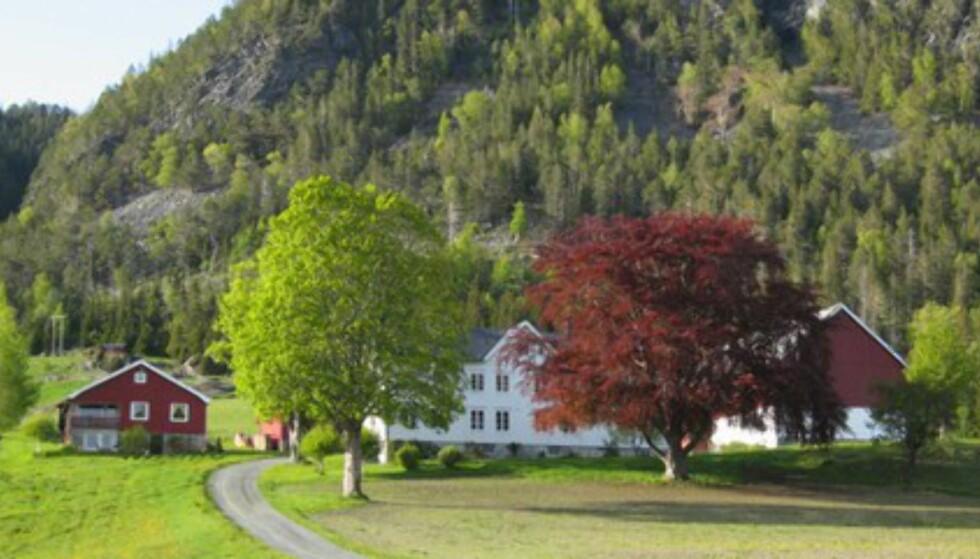 En av de mange vakre gårdene mellom Vanvikan og Leksvik