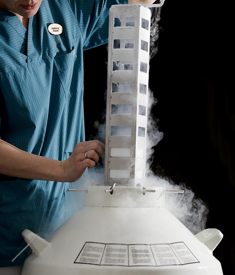 Eggene fra kvinnen fryses ned før de befruktes i prøverør. lllustrasjonsfoto: Fertilitetsklinikken Medicus