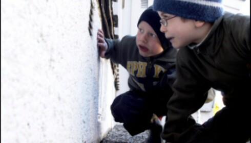 Aktiviser familien, og la gjerne de minste få oppgaven med å sjekke husets grunnmur. Illustrasjonsfoto: Jan Lillehamre/Ifi.no