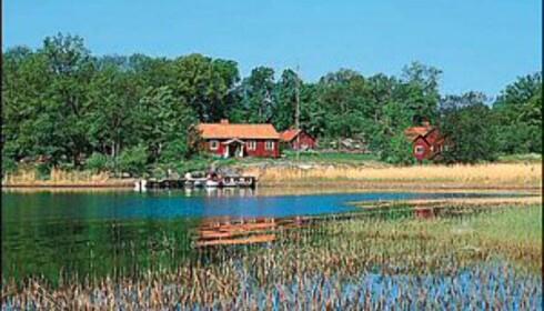 Fra Ängsö Nationalpark Foto: Archipangelo.nu
