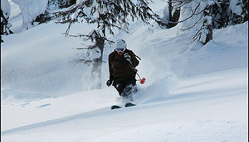 Vebjørn Haugerud har to sesonger i Canada på samvittigheten og har kjørt i de fleste større anlegg i Canada.