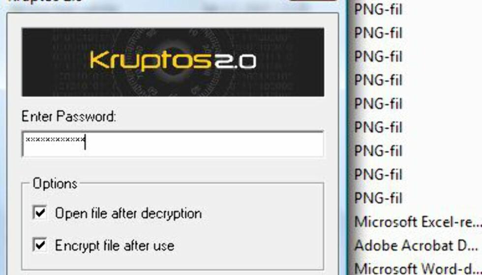 Krypter viktige filer