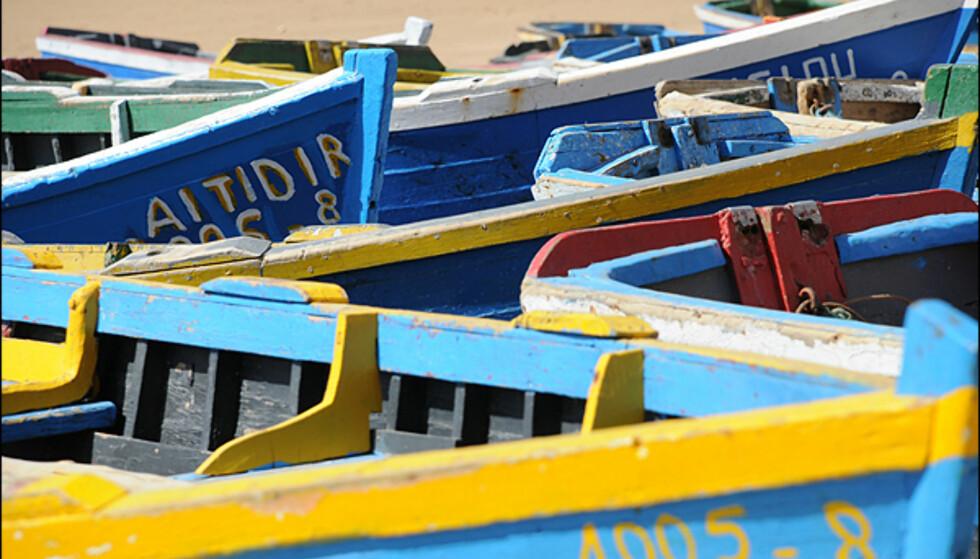 Farger i fiskehavnen i Taghazout.