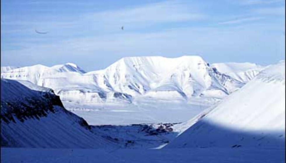 Longyearbyen ved foten av dalen, sett fra breen. Foto: Kristin Sørdal