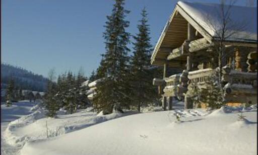 Hyttene som ligger høyt på fjellet har opplevd størst prisvekst i 2007. Bilde: Colourbox.no