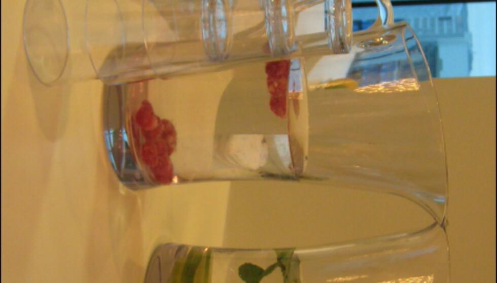 Frisk frukt, friskt vann med smak og aviser er tilgjengelig i spaens loungeområde. Foto: Elisabeth Dalseg