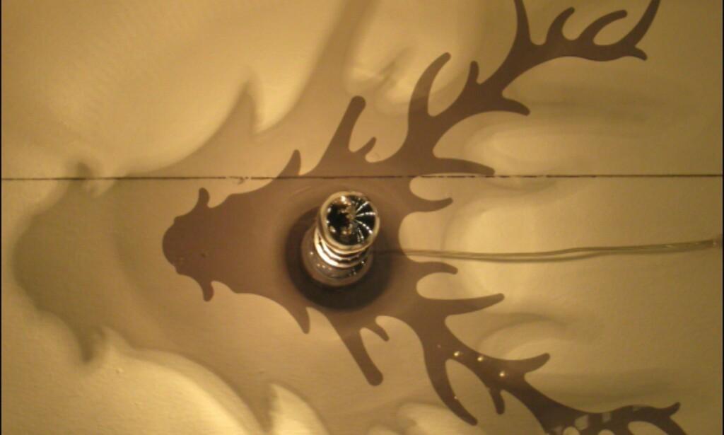 Enkel glødelampe med elg i plexiglass lager morsom skygge på veggen. Fra Globen.