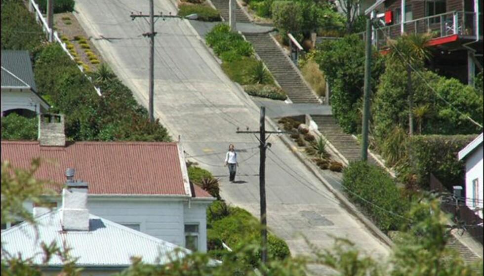 Baldwin Street i Dunedin i New Zealand heller 35 grader på det meste.