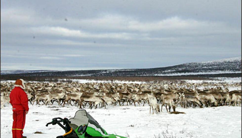 Er Finnmark noe for deg? Her kan du få slettet studielån, og kose deg med noen svært fordelaktige økonomiske godbiter. Foto: Inga Holst