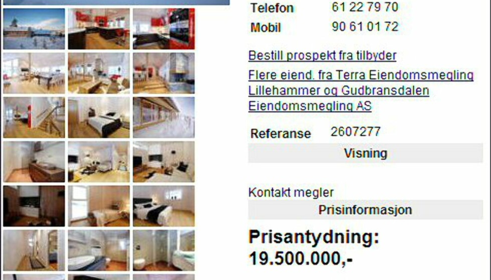19,5 millioner for fylkets dyreste i Oppland. <i>Faksimile fra finn.no.</i>