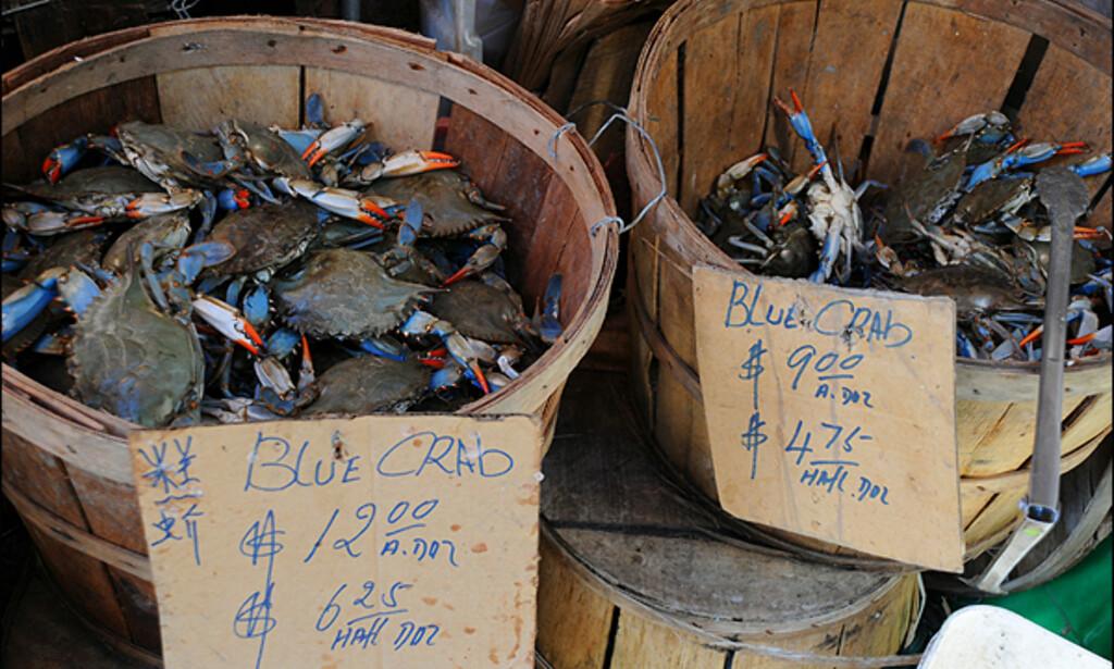 ...om det ikke måtte friste med en blå krabbe?