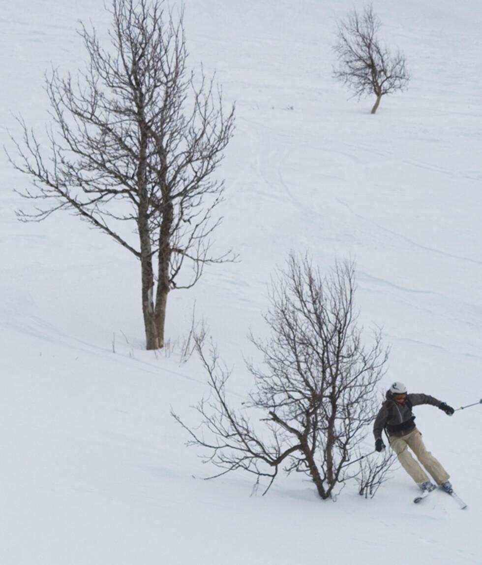 Foto: FOTO: Hemsedal Turistkontor