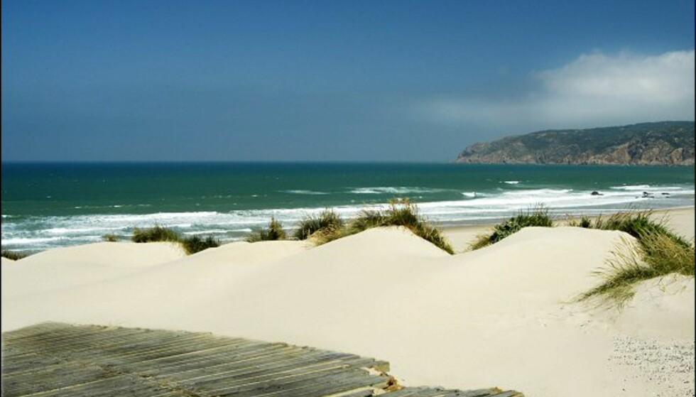 Vindblåste og surfevennlige Praia do Guincho ligger rett utenfor feriestedet Cascais i Portugal.  Foto: Vibeke Montero