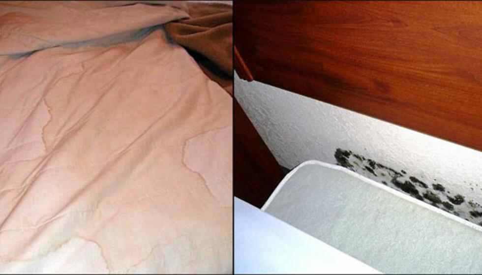 Eden Plaza høres jo fint ut, men sengetøyet hos londonhotellet frister ikke til en liten hvil engang (til venstre). Og ikke stort bedre over dammen: Bak sengen på Nashville-hotellet Days Inn Vanderbilt/Music Row trives kun muggsoppen ... Foto: Private bilder fra Tripadvisor.com