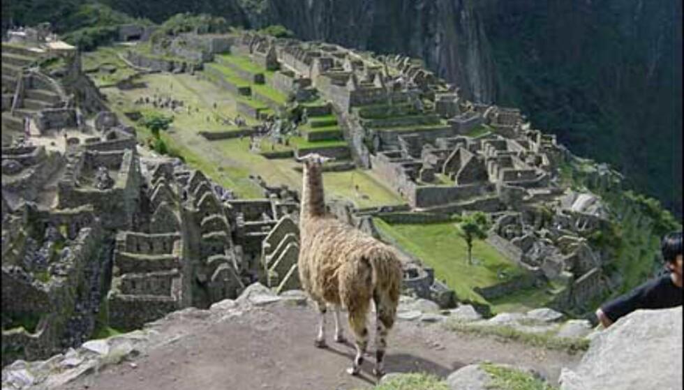 Machu Picchu var også en uoppdaget inkaby, helt til Hiram Bingham oppdaget byen i 1911.   Foto: Paul Jacob Hansen
