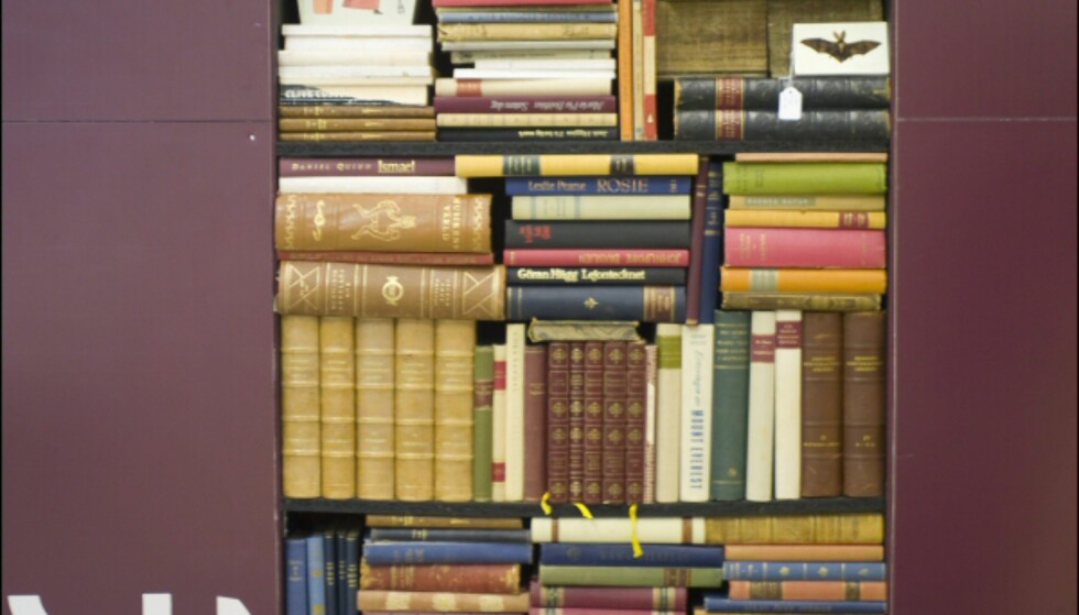 Gamle bøker, minner og støvete farger. Bibiliotekstrenden er lun. Foto: Alexander Ruas  Foto: Alexander Ruas