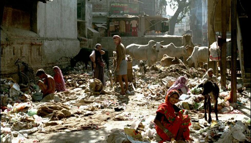 India er et kultursjokk. Foto: Vibeke Montero