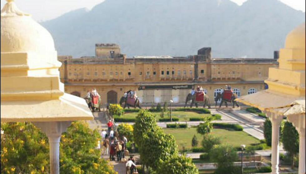 Amber Fort i Jaipur sees best fra elefantryggen. Foto: Vibeke Montero