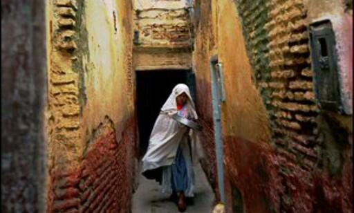 I Marrakeshs bakgater går livet sin vante gang. Foto: Vibeke Montero