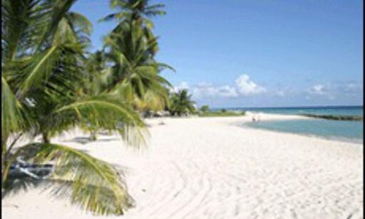 image: Hoteller spiser opp Karibias strender