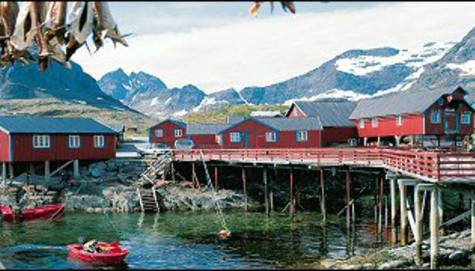 Foto: Frithjof Fure/Innovasjon Norge Foto: Frithjof Fure/Innovasjon Norge