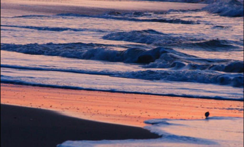 image: BILDER: Ocracoke Island