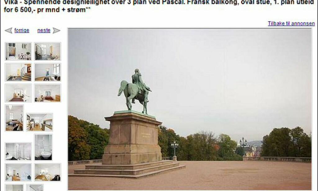 Og heller ikke Carl Johan på hesten følger visst med på kjøpet... Faksimile fra finn.no