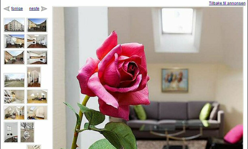 En enslig rose? Følger den med på kjøpet om du kjøper leiligheten på Frogner til 3,99 milllioner kroner? <i>Faksimile fra finn.no</i>