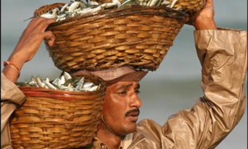 Mange livnærer seg som fiskere i Goa. Foto: Haakon F. Stenersen