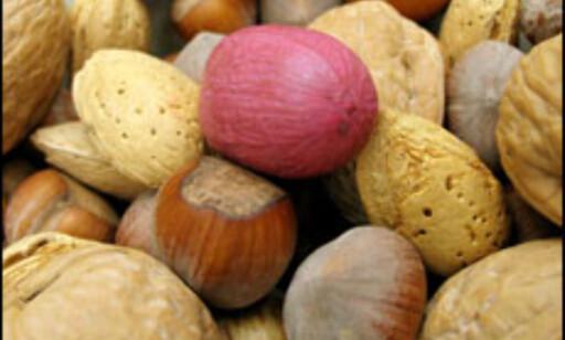 Are You nuts?? Nøtteallergi? Det kan være vanskelig å gjøre seg forstått på andre språk.  Foto: Jason Antony