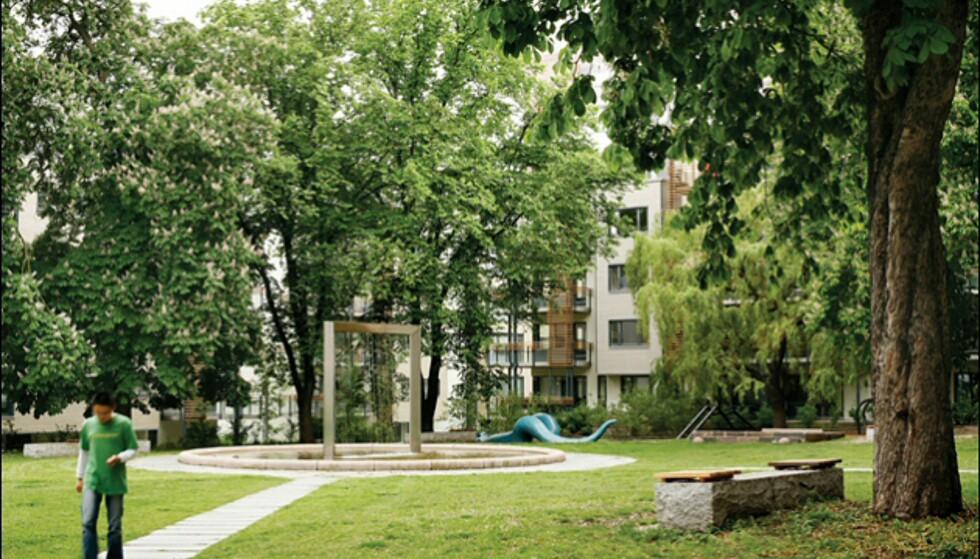 Pilestredet Park har nådd målet om å bli en grønn oase, sentralt i Oslo sentrum.