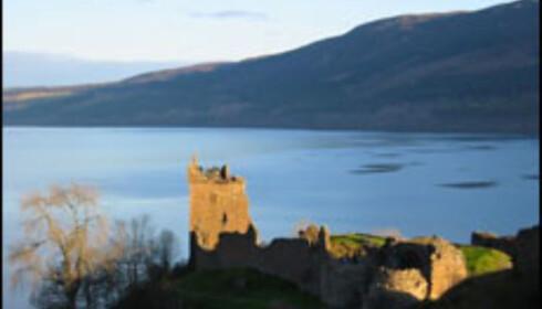 Uhyret i Loch Ness har stilnet ... Foto: Steve Drewery