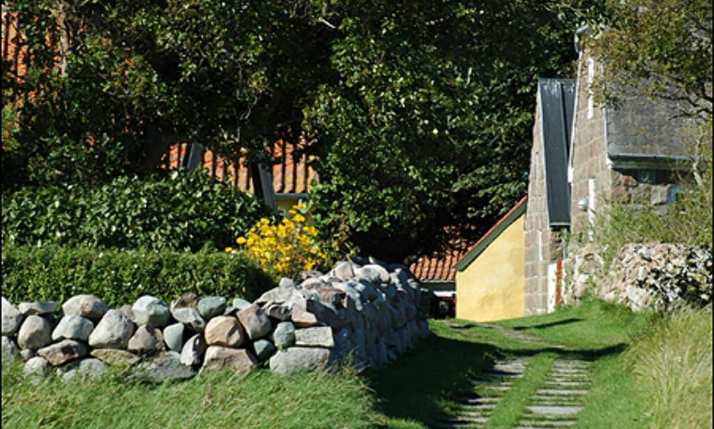 image: Bildespesial: Vrakjakt i Kattegat