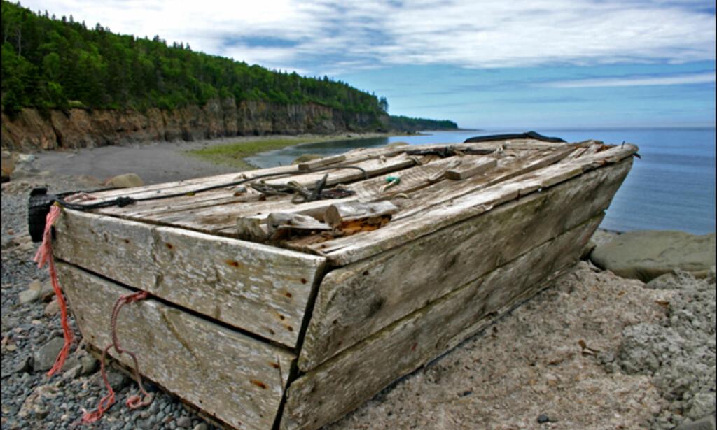 For all del, Nova Scotias naturomgivelser er flotte, men kanskje ikke like storslåtte og imponerende som naturen andre steder i Canada. Foto: Kim Jansson