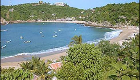 Puerto Angel har fantastiske strender. Foto: www.puertoangel.net