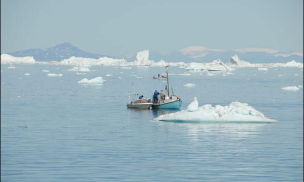 Enkelte steder duppet småbåtene nesten like tett som isfjellene. Det er små farkoster med påhengsmotor som gjelder for de som driver matauk for husbruk langs kysten. Det finnes nok mye dårlig vær her, men ikke dårlige klær ... Foto: Lars Brubæk
