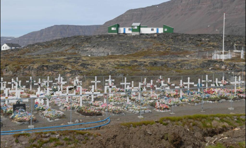 Lokal kirkegård intenst pyntet med plastblomster. Foto: Lars Brubæk