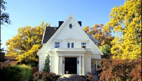 Hvite hus synes godt i terrenget, og detaljer som søyler kommer til sin rett. Foto: Ifi.no Foto: IFI