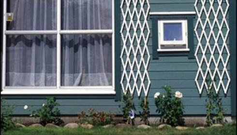 De hvite detaljene synes godt, mens listene som er malt i en mørkere grønnfarge enn selve huset forsvinner nesten. Foto: ifi.no Foto: ifi.no