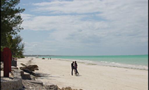 Fantastiske strender på Zanzibar. Foto: Dag Erik Grøtnæs